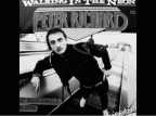 mindtrax / peter richard  – walking in the neon (pm 120021)